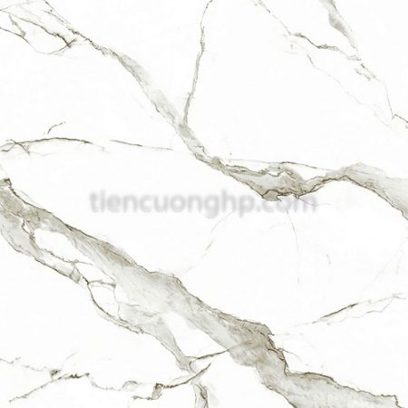 Gạch Eurotile Signature SIG-P6606